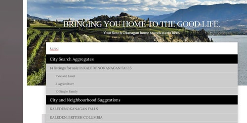 search widget for mls on realtor website